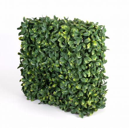 Portable Laurel Hedge Uv Stabilised 75cm X 75cm