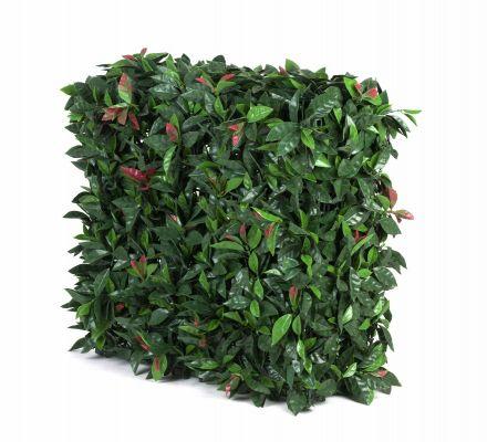 Portable Uv Artificial Hedge Plant Photinia 75cm X 75cm