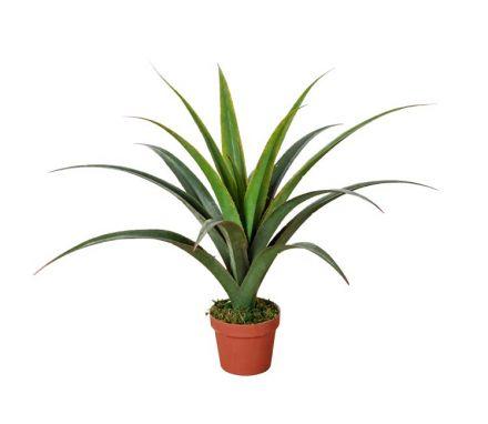 Artificial Dracaena Plants 80cm