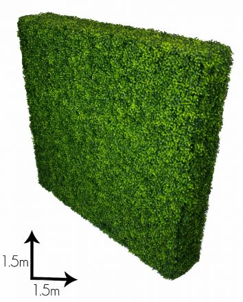 Large Portable Boxwood Hedges Uv Stabilised 1.5m By 1.5m