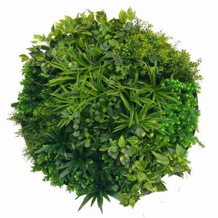 Artificial Green Wall Disk Art 100cm - Dark Aloe Vera
