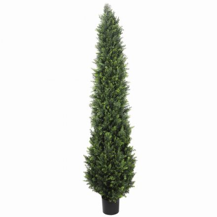 Uv Resistant Cypress Pine Tree 1.8m