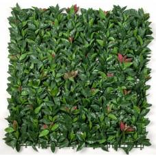 Photinia (red Robin) Leaf Screens / Panels Uv Stabilised 1m X 1m