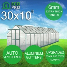EcoPro Greenhouse 30 x 10