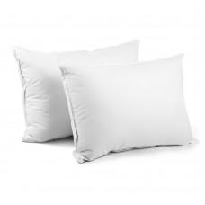 2 Pcs Duck Feathers Down Pillow W/ Bag