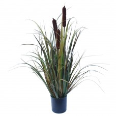 Brown Grass Plant 60 Cm
