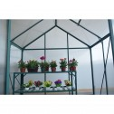 EcoPro Greenhouse 8x6 4mm
