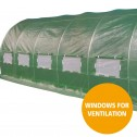 Greenhouse EcoFresh Walk in Greenhouses 6m x 3m x 2m windows