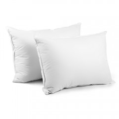 2 Pcs Duck Feathers Down Pillow W/ Bag
