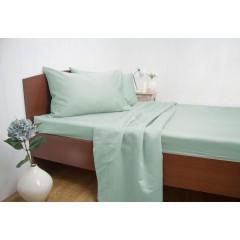 Queen Size 1500tc Cotton Rich Sheet Set (mint Color)